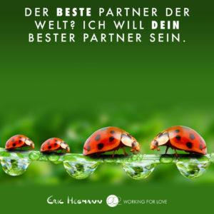 Ich will der beste Partner für dich sein