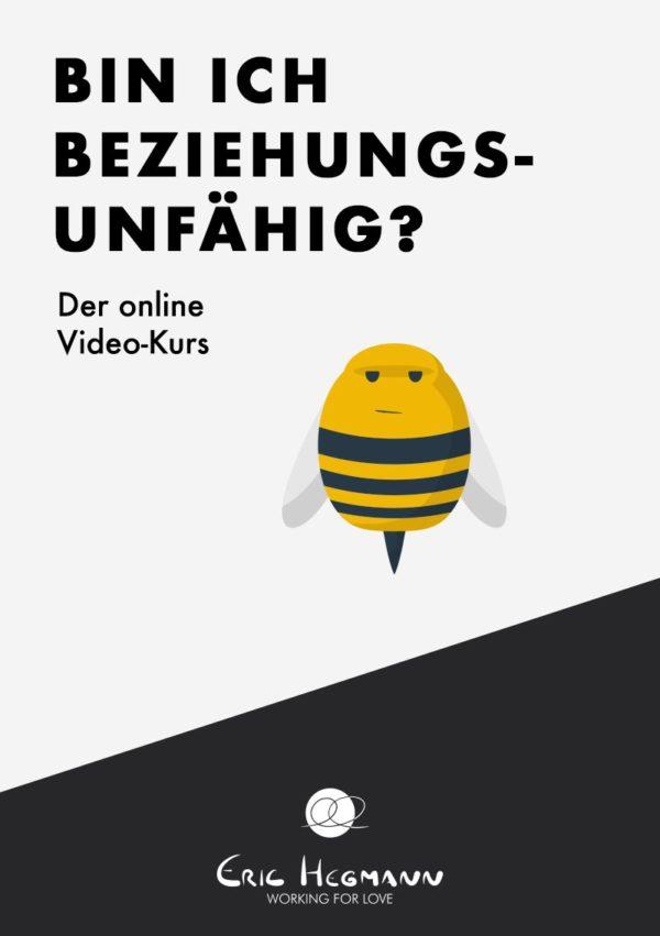 Shop-Eric-Hegmann-Onlinekurs-Beziehungsunfaehig